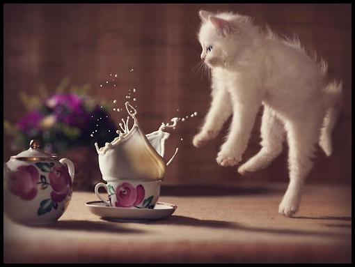 Oops~! by kimera jam