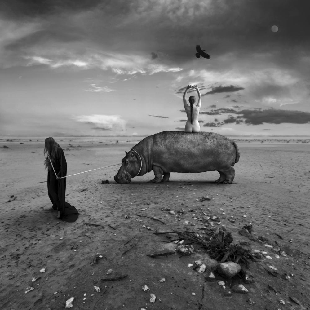 Trauma II by Dariusz Klimczak