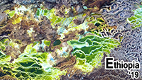 Ethiopie 2019