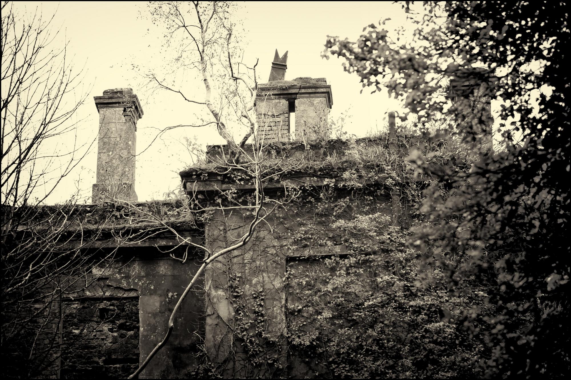 baron hill 28